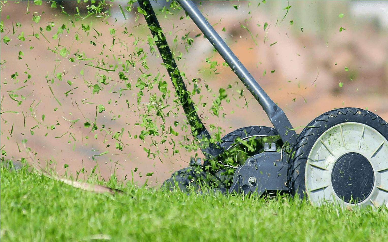 Entretien jardin de votre location saisonnière avec Keylodge - la Réunion